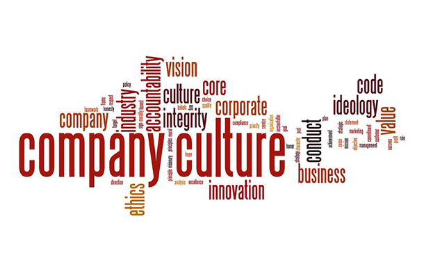 4 Types of Organizational Culture