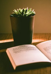 plant and open book